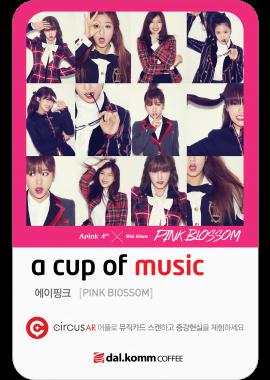 201404│Apink